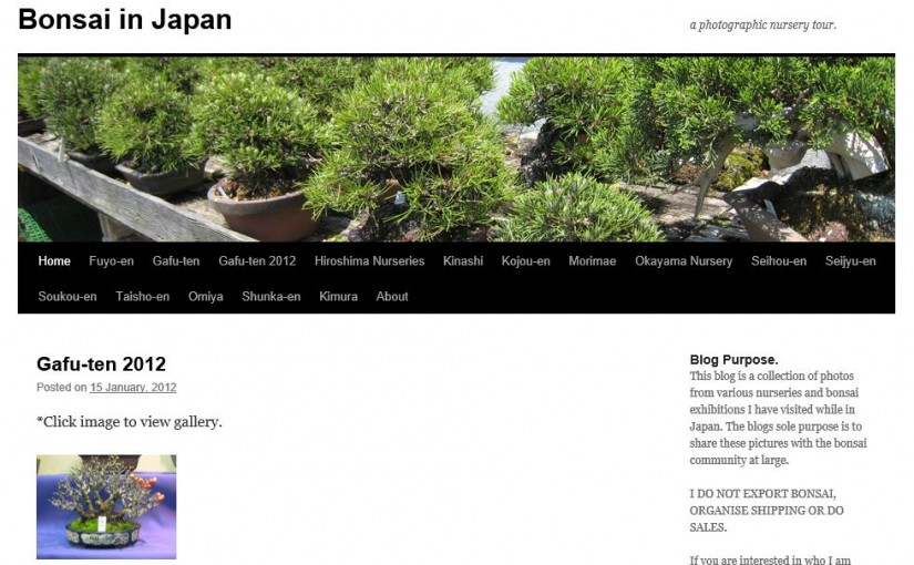 Blog Bonsai in Japan