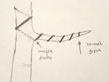 Jeżeli planujesz wygiąć gałąź w górę, drut powinien zostać nawinięty na gałąź od dołu.