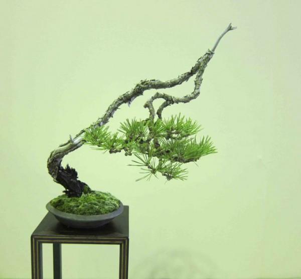 Bonsai styl bunjin - styl literacki