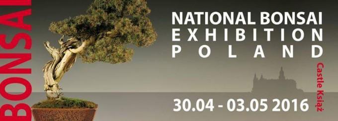 Narodowa wystawa bonsai 2016 na Zamku Książ