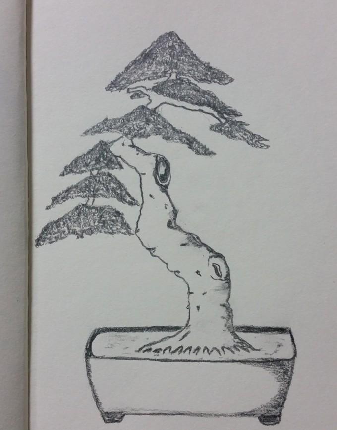 Jak narysować drzewko bonsai
