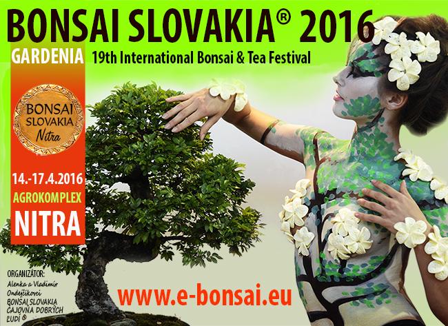 Bonsai Slovakia 2016