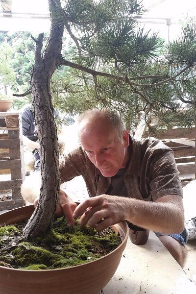 3-spotkanie-klubu-bonsai-poznan-w-sulecinie-09172016-5