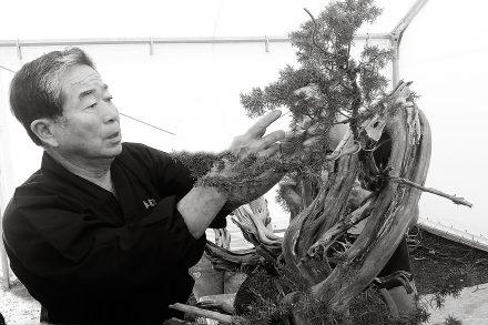 Mistrz Kobayashi podczas pracy