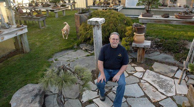 David Crust – czy to jeszcze bonsai?