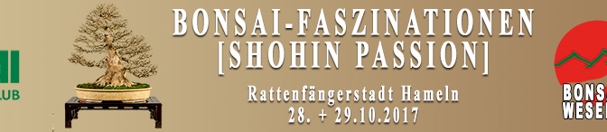 Bonsai-Faszinationen + Shohin Passion, 28-29.10.2017, Hameln, Niemcy