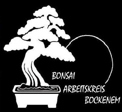 Zostałem członkiem grupy roboczej w Bockenem
