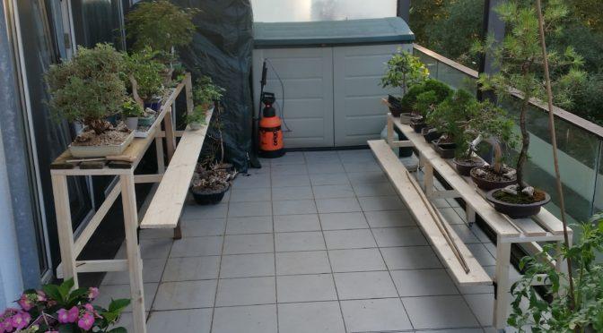 Nowe ławki do bonsai, nowe zacienienie na balkonie