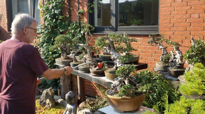 W ogrodzie Volkera Einbocka