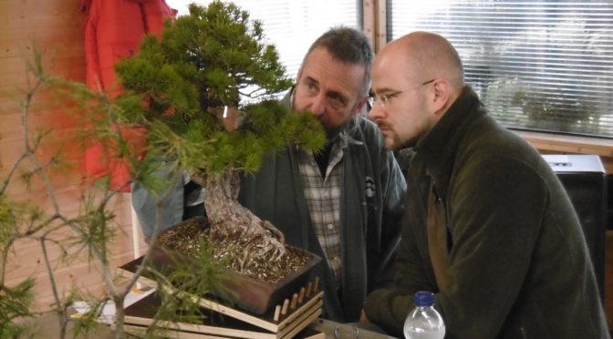 Warsztaty z kształtowania drzew iglastych z Wernerem Buschem